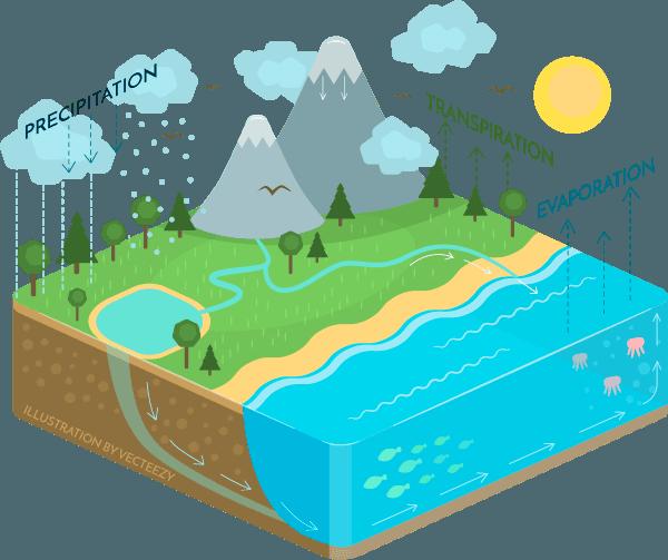 Natural CBD Water